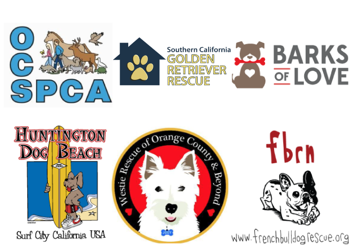 Surf City Surf Dog Competition in Huntington Beach, CA, Sep